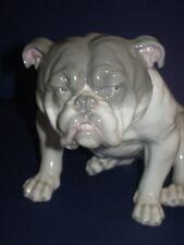 Antique Heubach Gebruder porcelain Large English Bulldog cca 1900 Germany