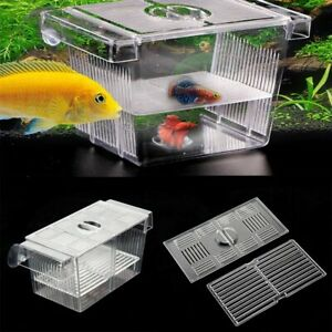 Transparent Aquarium Hatchery Trap Fish Breeding Box Tank Fry Isolation Breeder