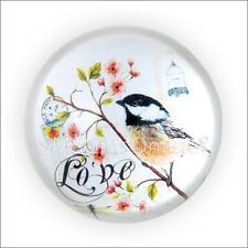 Vintage style victorien oiseaux & papillon en verre presse-papier avec mots love