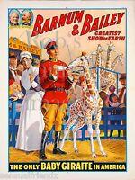 Ringling Bros. Barnum & Bailey Circus Poster Baby Giraffe Greatest Show on Earth