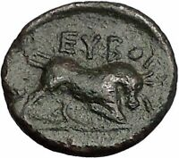 ERETRIA in EUBOIA for the EUBOIAN LEAGUE 190BC Bull Ancient Greek Coin i56092