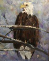 Original Vintage Jeff Barnes 16x20 Oil Painting Eagle Portrait Perched In Tree