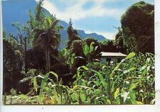 CP Ile de la Réunion - Route du Grand Ilet