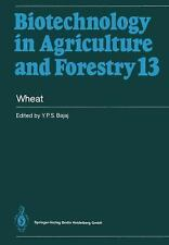 Biotechnology in Agriculture and Forestry Ser.: Wheat 13 by Y. P. S. Bajaj...