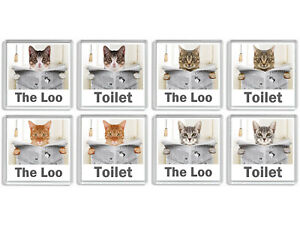 TABBY CAT READING A NEWSPAPER ON THE LOO Novelty Toilet Door Signs (8 DESIGNS)