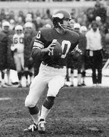 1974 Minnesota Vikings FRAN TARKENTON Glossy 8x10 Photo NFL Football Print