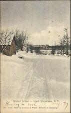 Loch Sheldrake NY Winter Scene c1905 Postcard