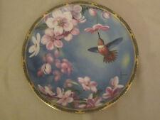 RUFOUS HUMMINGBIRD collector plate CYNDI NELSON Pickard APPLE BLOSSOMS Bird