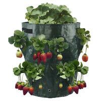 Erdbeer Pflanzer Tasche Pflanzbeutel Blumen Pflanze Tomaten Wachsen Garten Neu