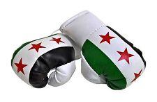 1 Paar Mini Boxhandschuhe Syrien 9 cm x 4,5 cm Kunstleder
