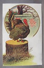 1909 THANKSGIVING Turkey standing on Tree Stump embossed postcard *