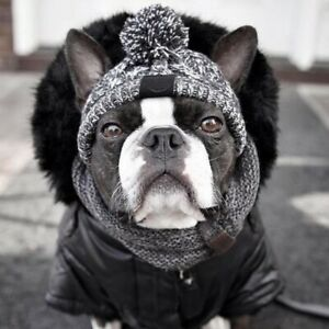Trapper style Hat for Dogs perfect for French Bulldog -Hat for Small Medium dogs