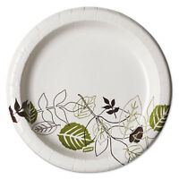 "Dixie Pathways Soak-Proof Shield Mediumweight Paper Plates 8 1/2"" Pathway 125"