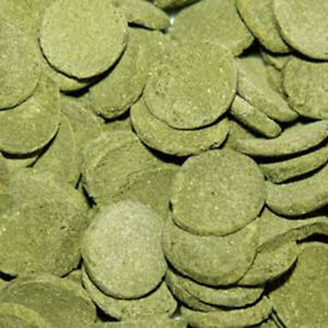 OSI Spirulina Wafers food for Plecos Loach Snail Catfish Marine Cichlids 200GRAM