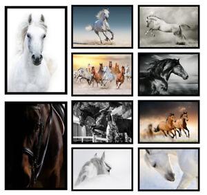 Horse Prints Equestrian Wall Art Girls Bedroom Living Room Posters - Unframed