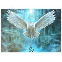 OWL CANVAS 'AWAKE YOUR MAGIC' BY ANNE STOKES BIRD OF PREY MYTHICAL WALL ART
