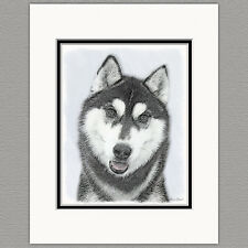 Siberian Husky Dog Black and White Original Art Print 8x10 Matted to 11x14