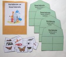 Teacher Made Science Center Resource Game Vertebrate or Invertebrate Sort