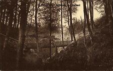 Flensburg Schleswig Holstein s/w AK 1910 gelaufen Schlucht bei Kaltund Brücke