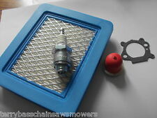 Hayter Double 3 Tuneup Kit Filter, Plug,Primer,Gasket Briggs & Stratton Quantum