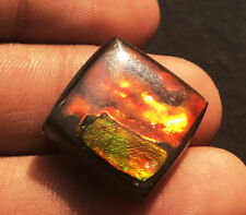 LOVELY 21.40 CARATS NATURAL CANADIAN AMMOLITE SQUARE CABOCHON 18x18x5.6MM