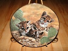 Small Wonders of the Wild Charles Frace Eyes of Wonder Baby Cat Plate