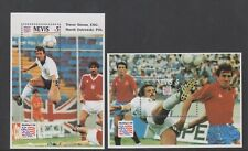 Nevis - 1994, World Cup Football sheets x 2 - MNH - SG MS768