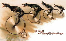 1890 Art~Greyhound Puppy Dog Dogs Racing Bicycles~New Large Christmas Note Cards