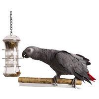 Parrot Pet Bird Toy Push & Pull Forage Feeder