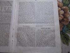 1843 Zeitung ...Juden 7 / Oldenburg / Odessa