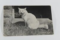 """Antique Vintage Greeting Card 1912 Collectible Post Card """"Why Don't You Write"""""""