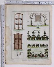 1779 Antico britannico sportivo stampa Bird RETI & trappole Woodcock comincia la WOLF Net