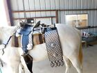 Ted Flowers silver Parade Saddle breast collar tapaderos bridle reins corona hip picture