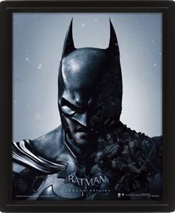 Batman and Joker, Arkham Origins, Official Framed 3D Lenticular, New