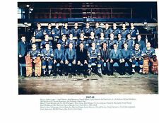 1967 1968 ST. LOUIS BLUES 8X10 TEAM PHOTO HOCKEY NHL MISSOURI USA
