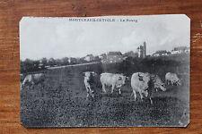 Carte postale ancienne MONTCEAUX-L'ETOILE - Le Bourg