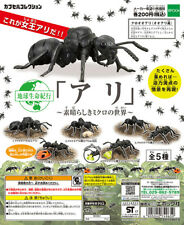 Epoch Capsule Insect Earth Life Journey Ant -Micro World- Completed Set 5pcs