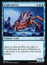 MTG Magic OGW - (x4) Ancient Crab/Crabe ancien, French/VF