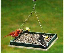 Songbird Essentials Hunter Driftwood Hanging Platform Bird Feeder Serublhpf105Hd