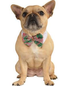 Poinsettia Pet Dog Cat Christmas Holiday Dress Up Bowtie-M-L