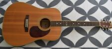 Cort EARTH200 SN Acoustic Guitar