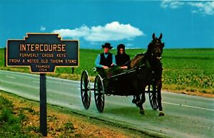 Vintage Amish Country Horse and Buggy, Pennsylvania, Lot of 2 Unposted Postcards