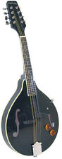 Ashbury AM-10E Electro-Acoustic Mandolin, Black GR31023K