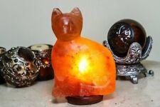 Himalayan Salt Cat Lamp