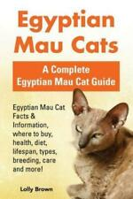Egyptian Mau Cats: Egyptian Mau Cat Facts & Information, where to buy, heal.