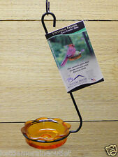 Erva Hanging Oriole Jelly Feeder w/ Orange Glass Dish Seed Mealworm Bird Feeder