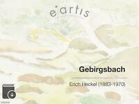 VIRTUELLE VORBESICHTIGUNG ZU EINEM ORIGINAL VON ERICH HECKEL >>> E-BOOK + VIDEO