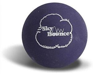 Sky Bounce Ball For Handball, Stickball, Catch, Fetch, Etc Purple 12 Pack