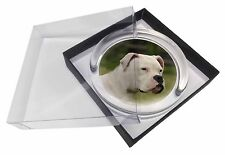 American Staffordshire Bull Terrier Dog Glass Paperweight in Gift Box, AD-SBT9PW