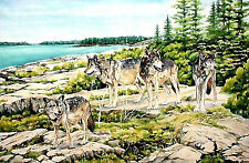 Wolves on Watch at Scoville Point Isle Royale National Park by WandasWatercolors